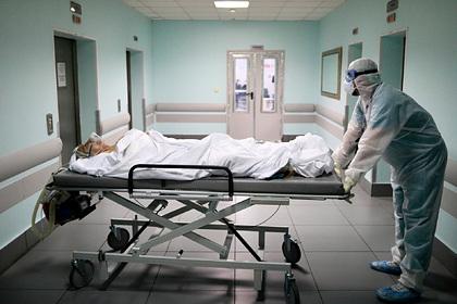 Спрогнозированы сроки спада заболеваемости COVID-19в России
